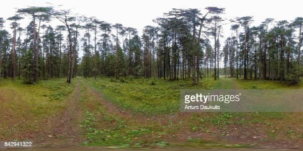 360 VR Landscapes of Northern Europe forests
