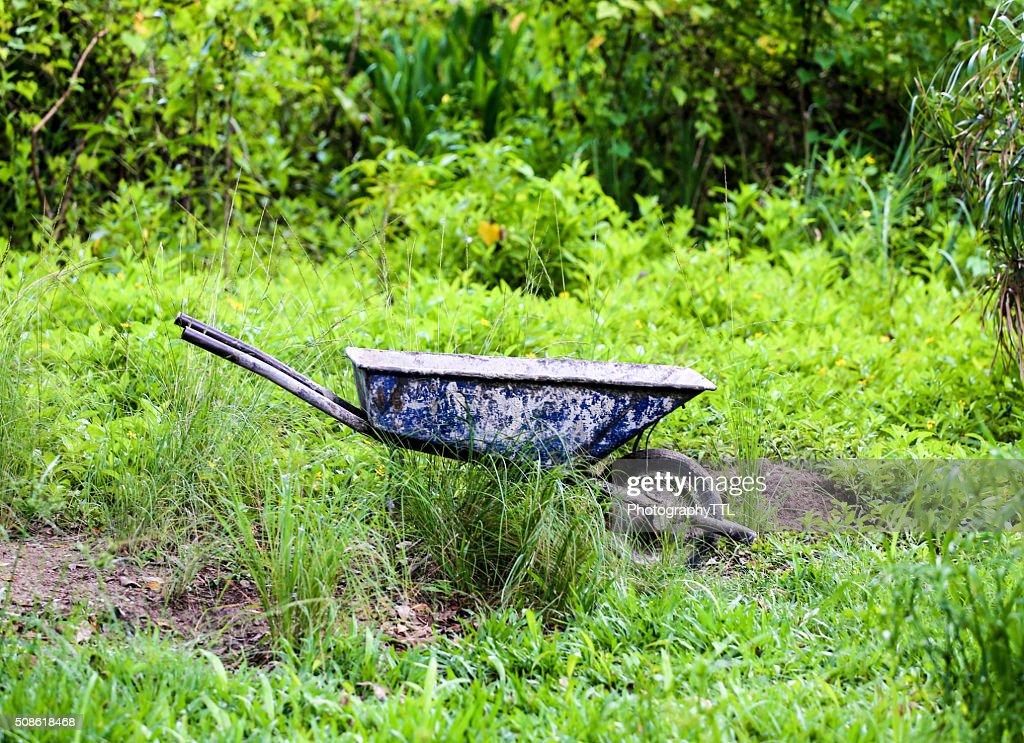 Landscaping wheelbarrow at a green garden. : Stock Photo