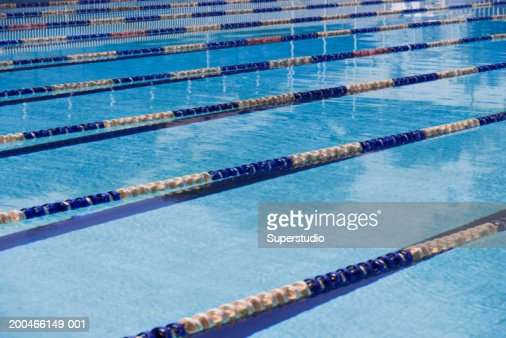 lane dividers in olympic size swimming pool stock photo getty images