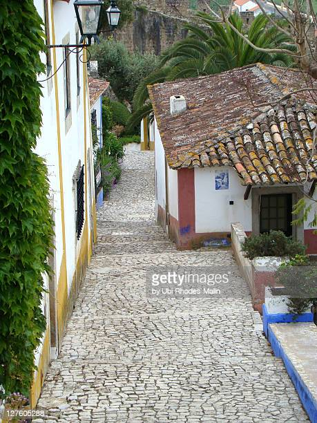 Lane in picturesque Obidos
