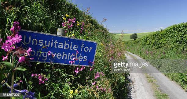 lane, unsuitable for vehicles .