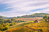 Langhe e Roero vineyards autumn landscape, Barolo, Dolcetto, Barcaresco wine. Cuneo province, Piedmont, Italy.