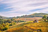 Langhe e Roero vineyards autumn landscape, Barolo, Dolcetto, Barcaresco wine. Cuneo province, Piedmont, Italy.