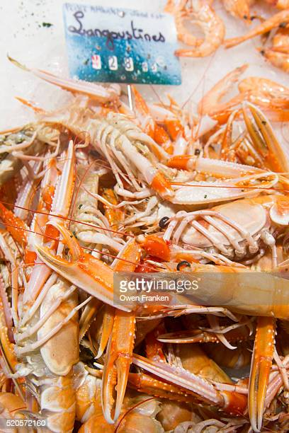 Langoustines (Dublin Bay prawns) for sale in a fish market, Nantes, France
