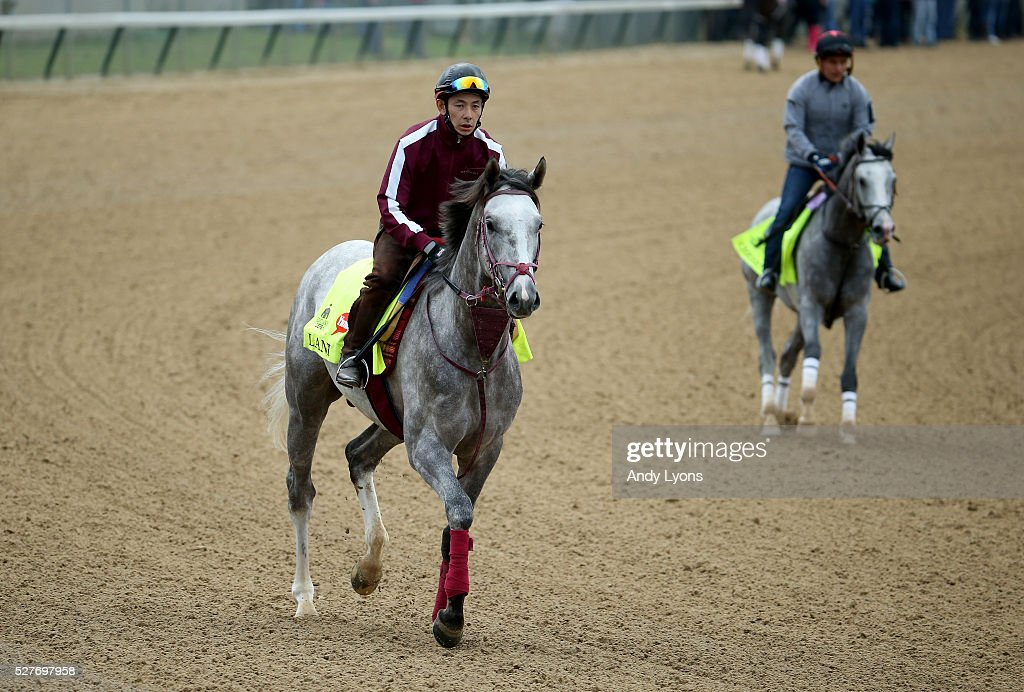 Lani runs on the track during the morning training for the 2016 Kentucky Derby at Churchill Downs on May 03, 2016 in Louisville, Kentucky.
