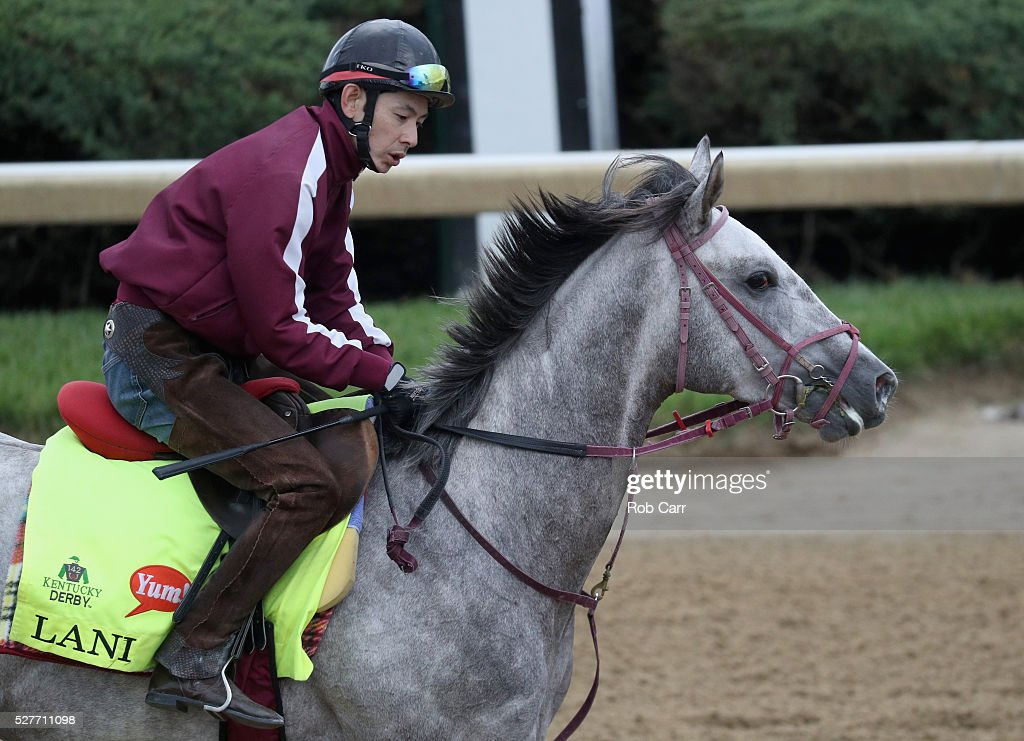 Lani trains on the track for the Kentucky Derby at Churchill Downs on May 03, 2016 in Louisville, Kentucky.