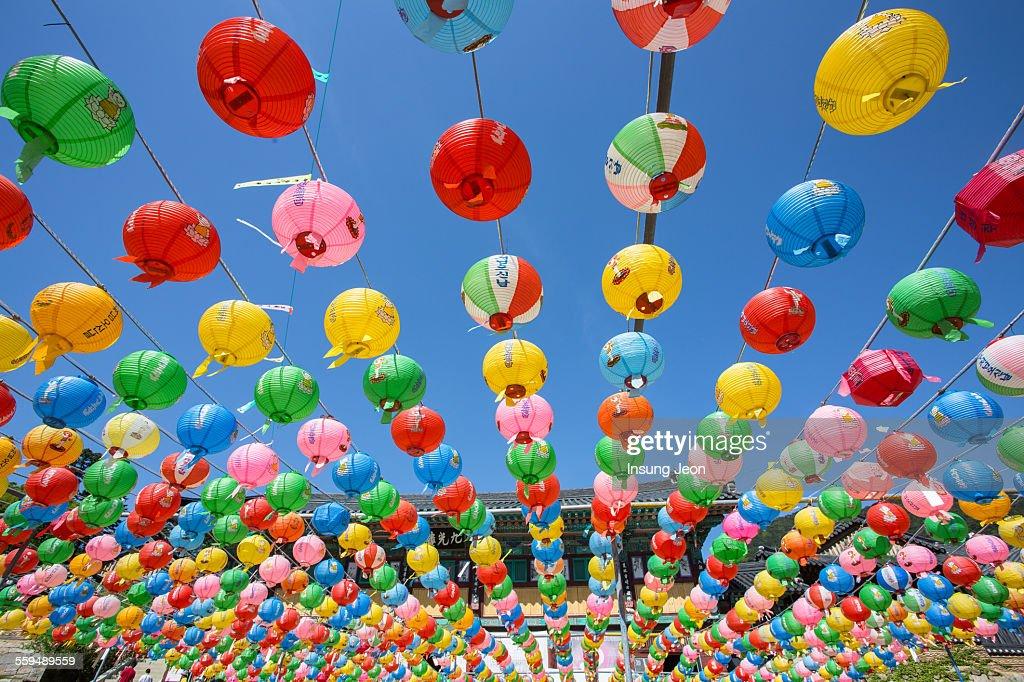 Lanterns for buddha's birthday