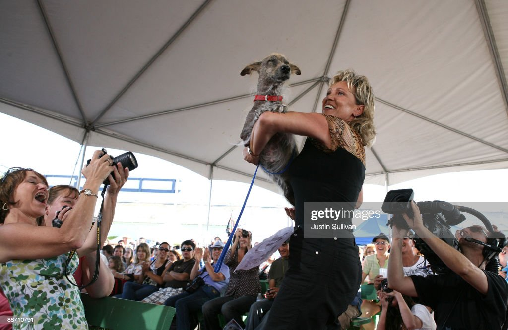 Lanya Bailey-Harrell of Fallbrook, California, shows off her dog Arf, a mixed Corgi and Collie, during the 21st Annual World's Ugliest Dog Contest at the Sonoma-Marin Fair June 26, 2009 in Petaluma, California. Pabst, a four year-old boxer mix won the annual World's Ugliest Dog contest.