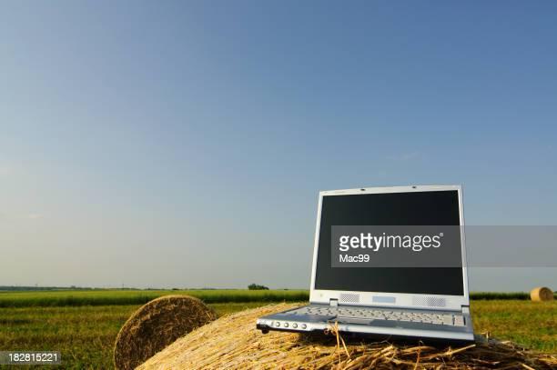 Laptop on bale