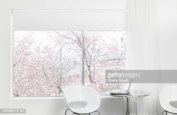 Laptop on metal table in apartment, cherry tree visible outside window
