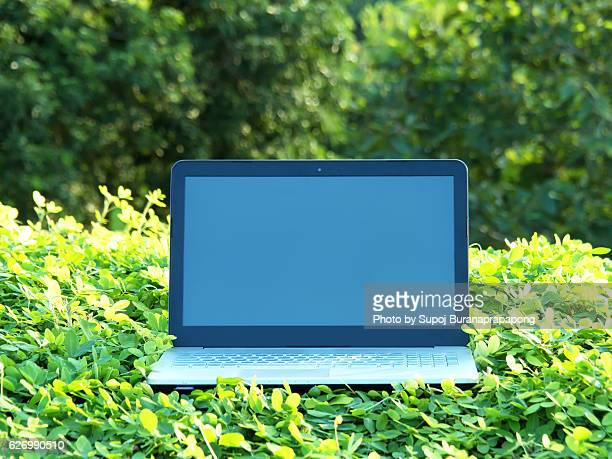 Laptop with blank screen on green grass