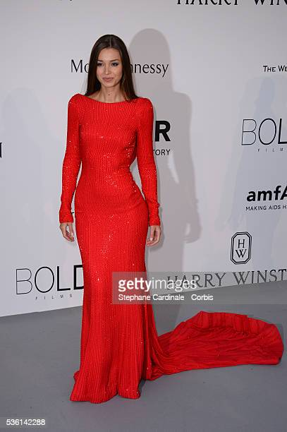Lara Leito attends the AmfAR Red Carpet during the 68th Cannes Film Festival on May 21 2015 in Cannes France