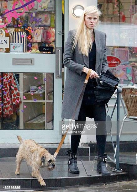Lara Stone is pictured leaving a shop in Primrose Hill whilst walking her dog Bert on February 16 2015 in London England