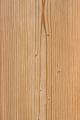 Macro with great detail of a larch wood plank