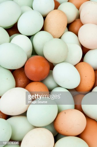 Large amount of eggs