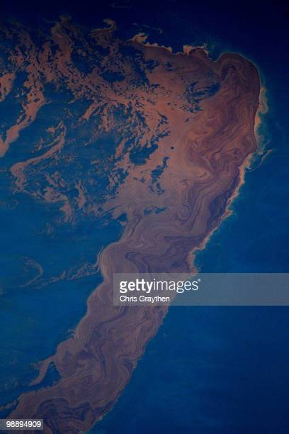 Large amounts of oil sit on the surface of the water that has leaked out of the Deepwater Horizon wellhead operated by BP on May 6 2010 in Gulf of...