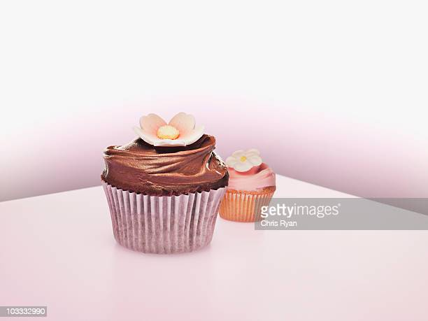 Large and small cupcakes with flower decorations