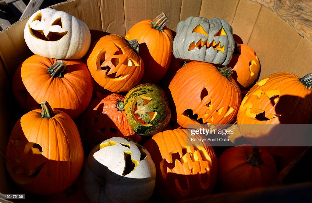 A large box is filled with the jacko'lanterns to be place in the gardens Jess Parrish and his artists from Cool Hand Ice Carving from Longmont are...