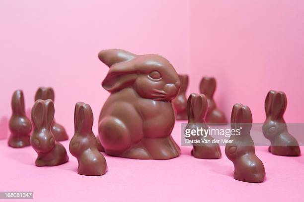 Large chocolate bunny surrounded by smaller ones.