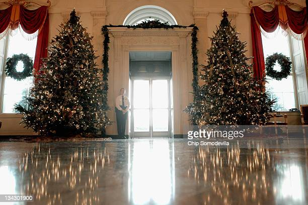 Large Christmas trees stand on either side of the North Portico entrance in the Entrance Hall during the first viewing of the 2011 White House...