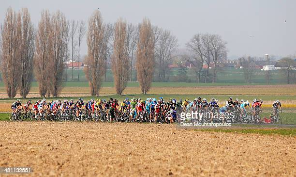 A large crash in the pelaton during the E3 Harelbeke Cycle Race on March 28 2014 in Harelbeke Belgium