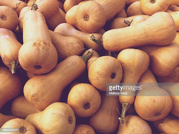 Large display of butternut squash.