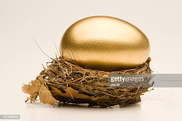 Large egg in a small nest.