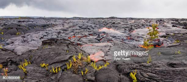 Large flow of lava burns landscape