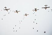 A large group of parachutists jump from five aircrafts