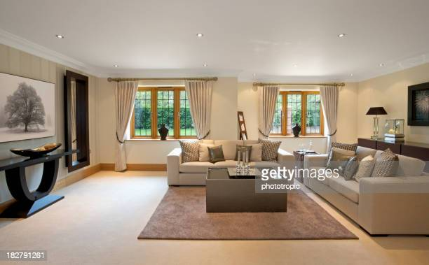 Large, model reception room in luxury home