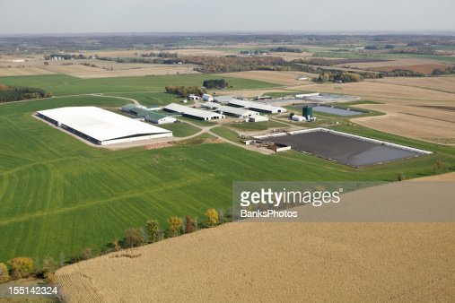 Large Modern Dairy Farm Operation Fall Aerial