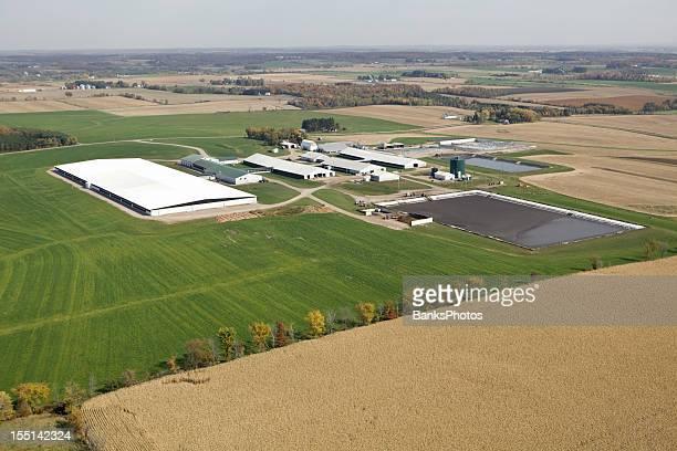広々としたモダンな酪農場操作秋の空からの眺め
