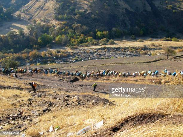 Large number of Kurds are crossing the border carrying heavy boxes to earn money For decades the IraqIran border has served as a smuggling route...
