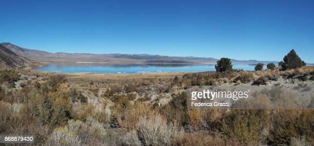 Large Panoramic View Of Lassens Meadows, Nevada