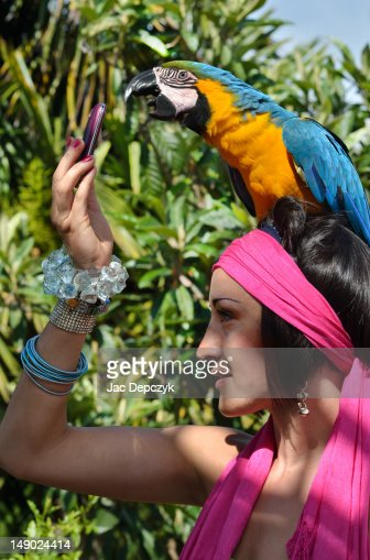 Large parrot answering her friend's mobile phone : Bildbanksbilder
