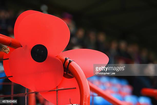 Large plastic Poppies are seen around the stadium in aid of the Poppy Appeal and the British Armed Forces during the FA Cup Qualifying Fourth Round...