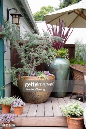 Large Pots And Plants On Patio Outdoors Stock Photo