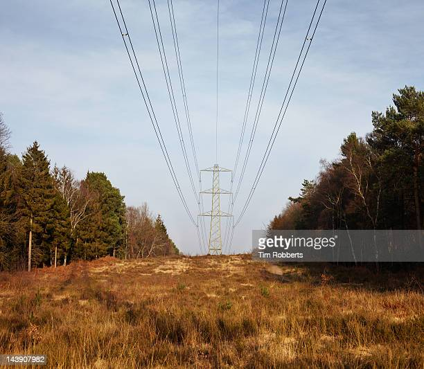 Large pylon and electricity cables.
