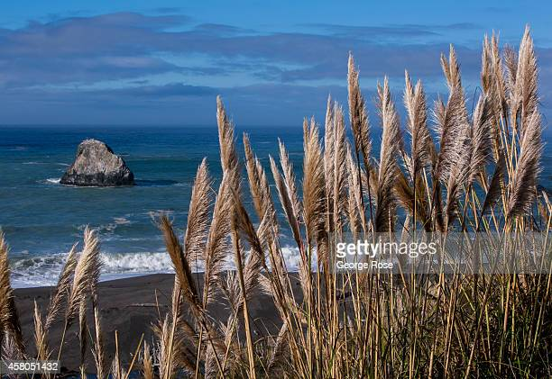 A large rock formation is viewed from a Highway 1 scenic overlook on October 18 in Jenner California Sonoma County's rustic Pacific Ocean coastline...