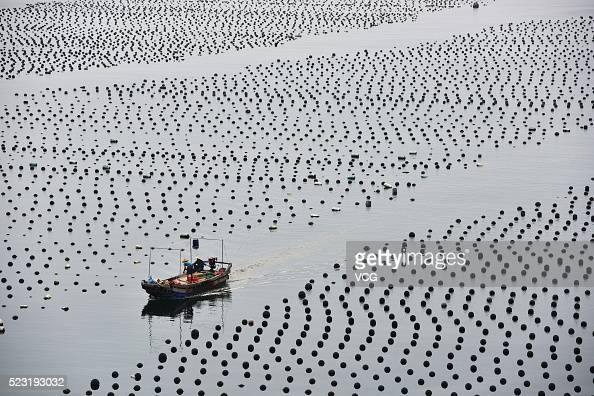 Large scale of fish rafts for feeding fish are seen at seaside of Nan'ao on April 21 2016 in Shenzhen Guangdong Province of China