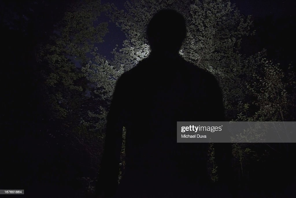large silhouette against trees from campfire : Stock Photo