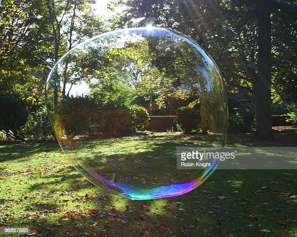 .Large soap bubble in park