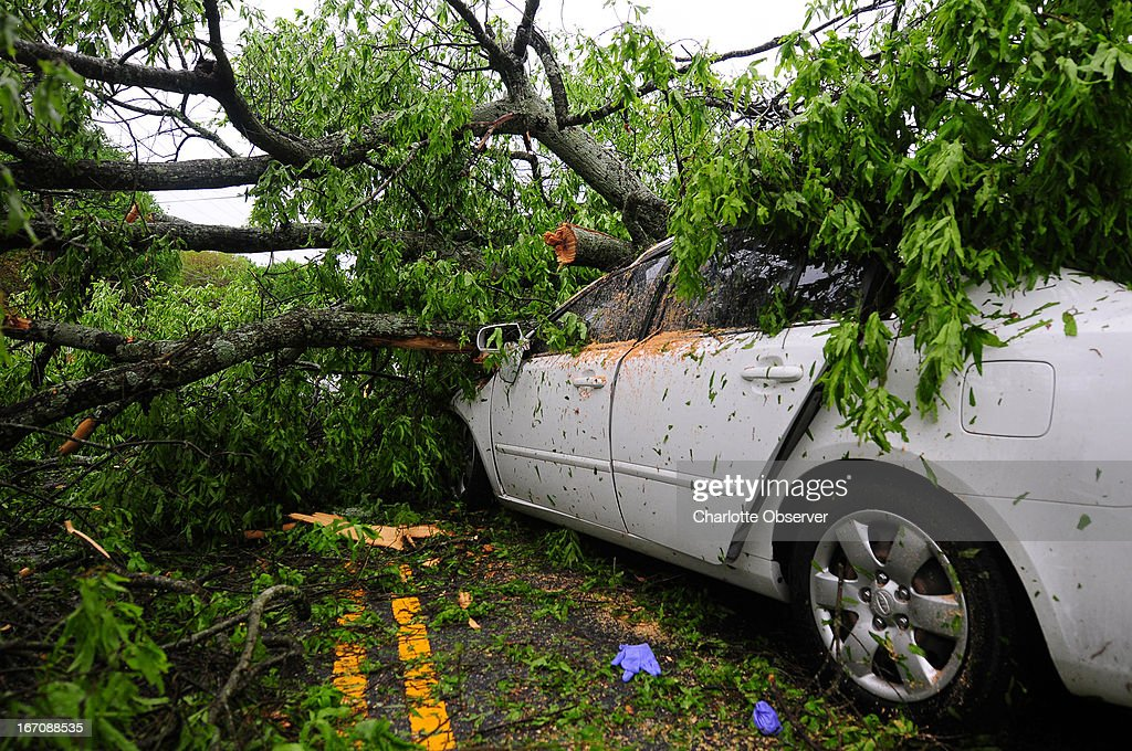 A large tree covers a Kia Optima LX in Charlotte, North Carolina, following a strong storm on Friday, April 19, 2013.