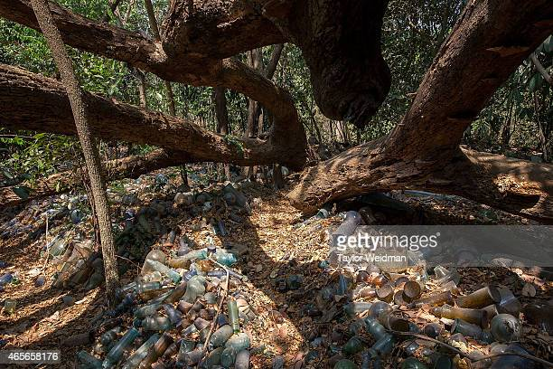 A large tree uprooted by Cyclone Nargis shades the hand blown glass items littering the grounds at The Nagar Glass Factory on March 9 2015 in Yangon...