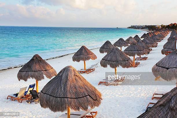 Palapas sur la plage tropicale avec de