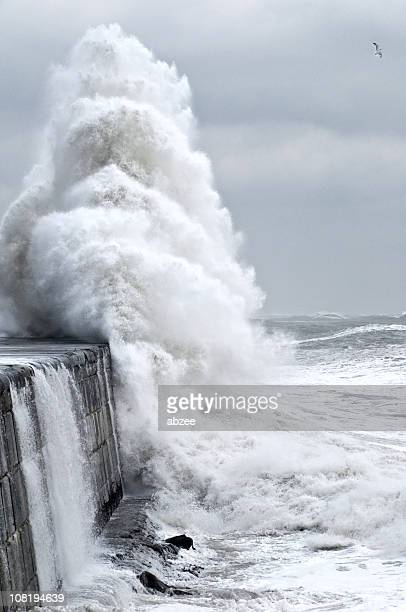 Large waves and surf during January storm at Aberdeen