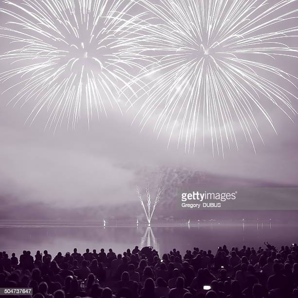 Large white and mauve Fireworks Display