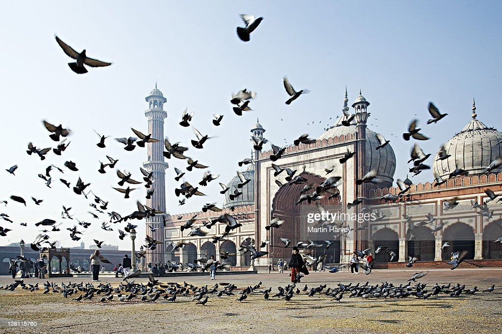 Largest mosque in India, Jama Masjid Mosque, where visitors feed pigeons, Delhi, India.