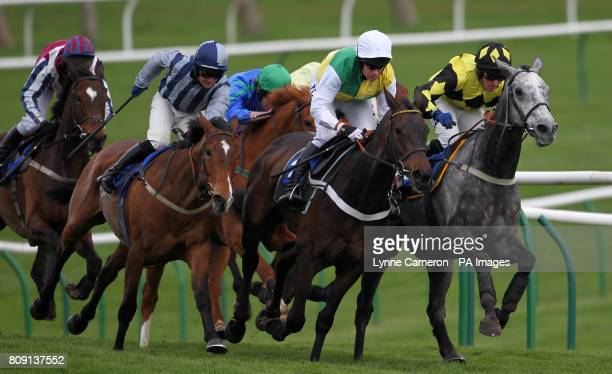 Larks Lad and Sunnyside during the NMT Plant Hurdle Race Race 4 at Ayr