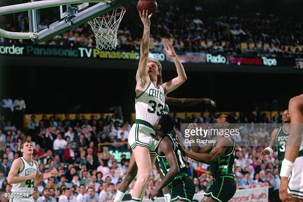 Larry Bird of the Boston Celtics shoots a layup against the Milwaukee Bucks during a game played in 1986 at the Boston Garden in Boston Massachusetts...